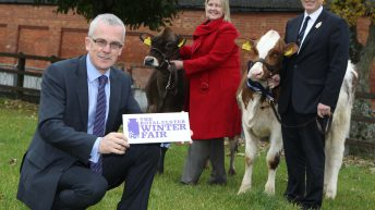Winter Fair set to become two-day event