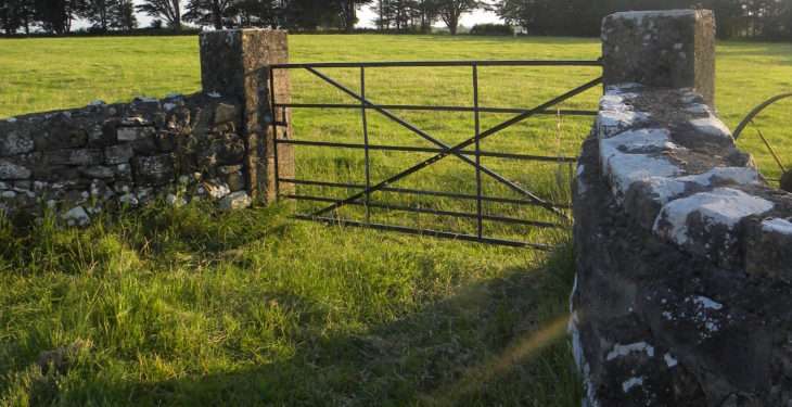Efficient lamb production: 'Closing the gate could make you money'