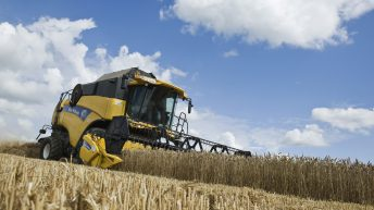 Dry summer's impact shows in nutritional analysis of 2018 crop
