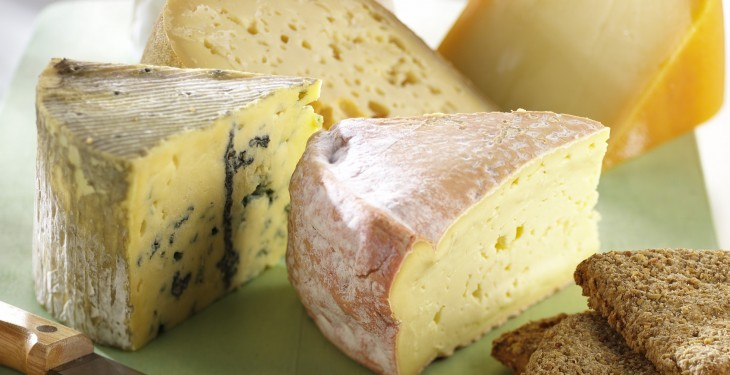US government to purchase surplus cheese to help out dairy farmers
