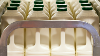 Dairy Crest introduces a 'milk price floor' for December and January