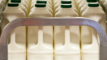 Canadian dairy firm announces £975 million Dairy Crest takeover plans