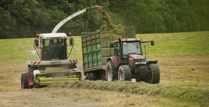 Could this tip to boost silage dry matter by up to 2t/ha work for you?