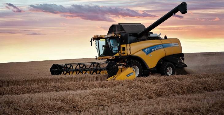 Highest UK wheat stocks on record