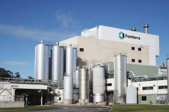 Fonterra predicts a lift in dairy prices later this year