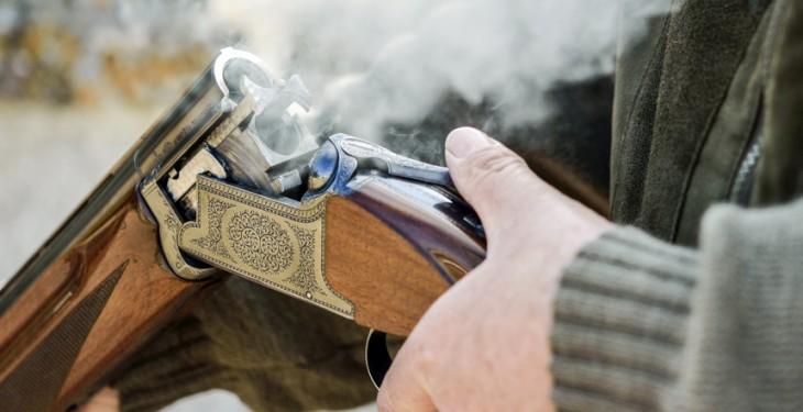 shot gun farmers, Shotguns, livestock shot shooting firearms, welfare inspecction
