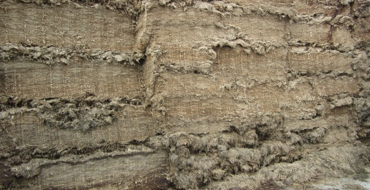 Northern silage yield drops to lowest in 12 years