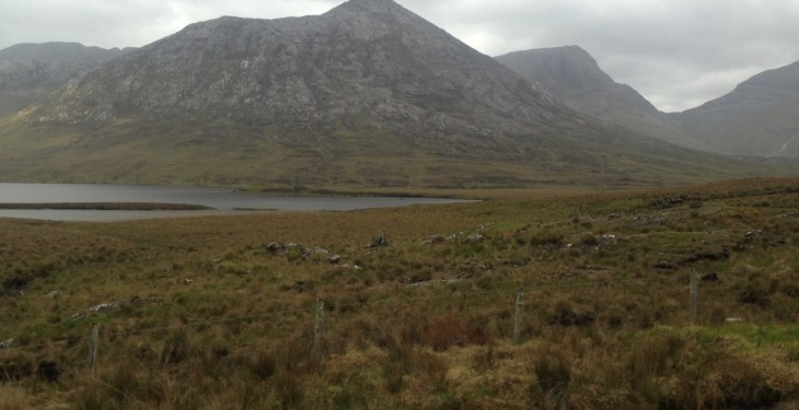 Landowner fined for damaging protected habitat