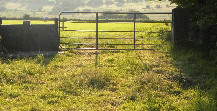 Rural crime: Trespassers instill fear among farmers
