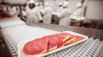 'Growing phenomenon' of food fraud forces MEPs to pass new rules