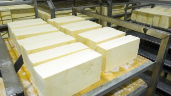Expanded Fonterra cheese plant can produce cheese for 3 billion burgers annually