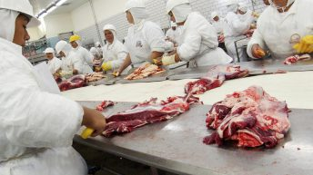 Report: Women make up only 36% of meat industry workforce