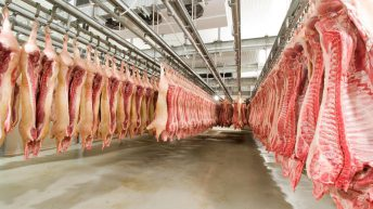 Local abattoirs campaign: 'Gove appears to be listening'