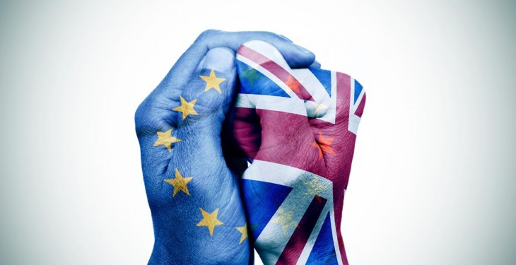 Almost half of Member States want their own EU exit referendum