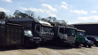 Farmer and haulier convicted and fined on animal welfare charge
