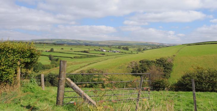 £80 million boost announced for Welsh farm environmental schemes