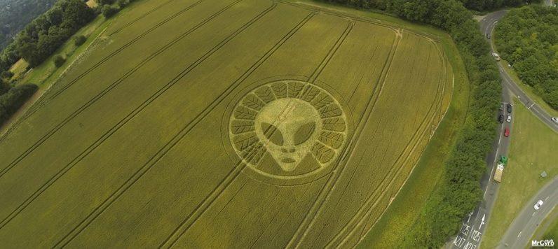 crop-marks.jpg