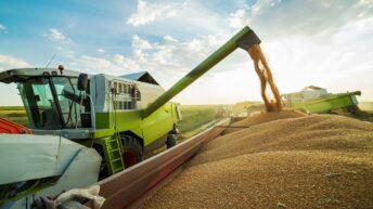 'Your Harvest' campaign kicks off online for 2020