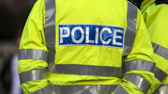 Police appeal for information following theft of 31 cattle