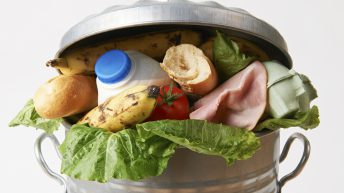 'EU generates 88m tonnes of food waste each year'