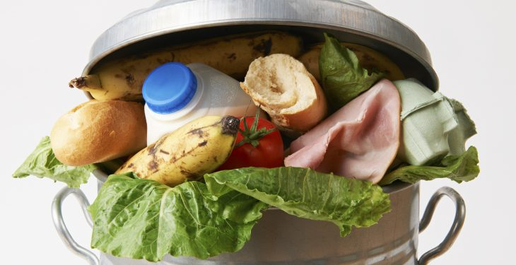 'EU generates 88m tonnes of food waste each year'
