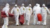 Bird flu confirmed on Russian 500,000-bird farm