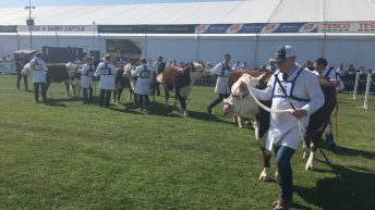 Video: Watch the first day at Balmoral Show 2017