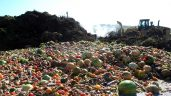 UK food waste falls by 7% per person in three years