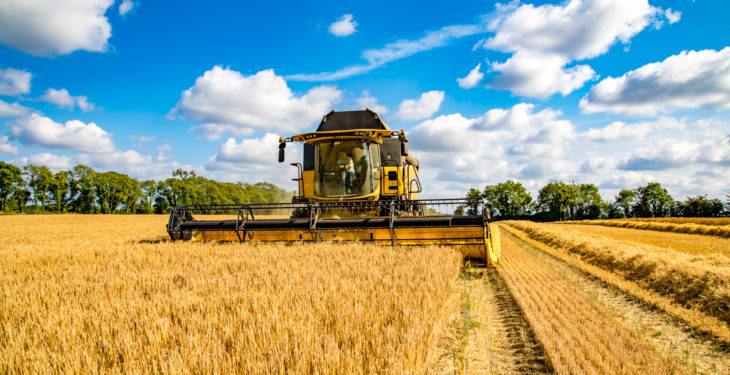 New ELM schemes must drive productivity in the arable sector – NFU