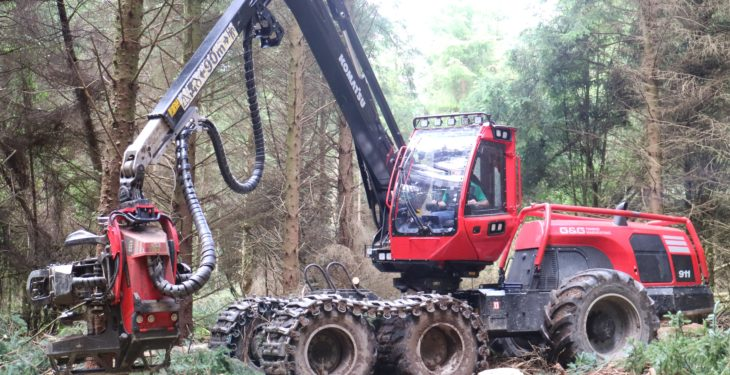 Pics: Laois brothers cut their teeth in forestry business with monstrous machines