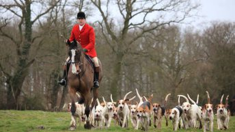 Countryside Alliance urges people to support Boxing Day meets