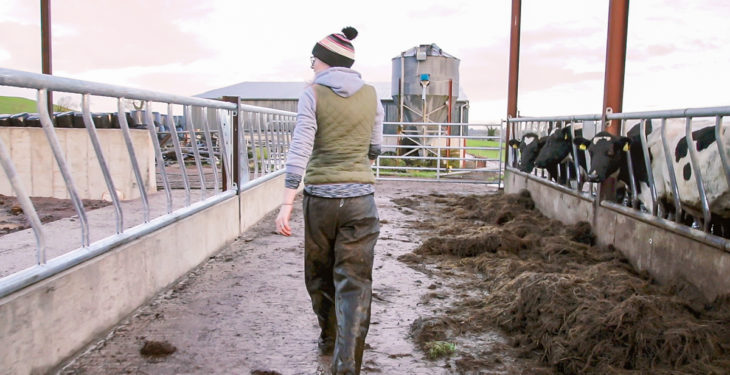 Bill 'fails to recognise farmers as food producers first and foremost'