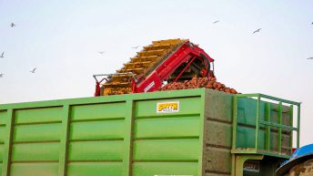 Potato harvest 2017: 'One of the worst in living memory'