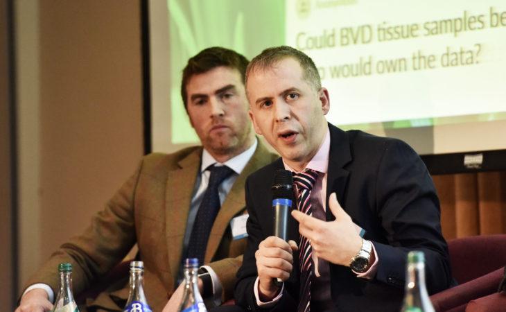 The parent trap: Inaccurate records stalling Irish breeding progress