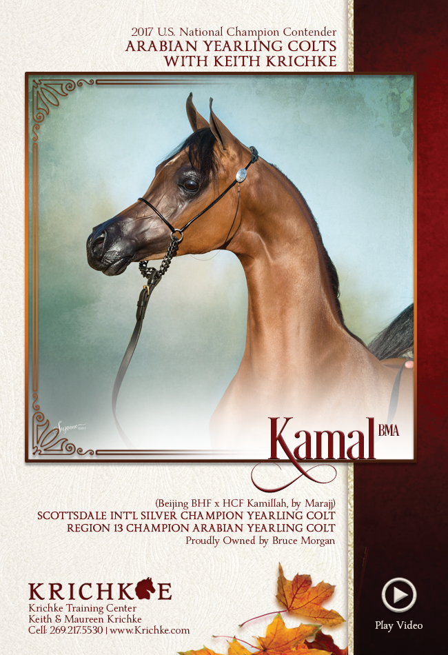Refined Style - Watch Kamal BMA with Keith Krichke - Yearling Colts Tomorrow