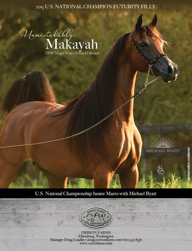 Unmistakably Makayah With Michael Byatt
