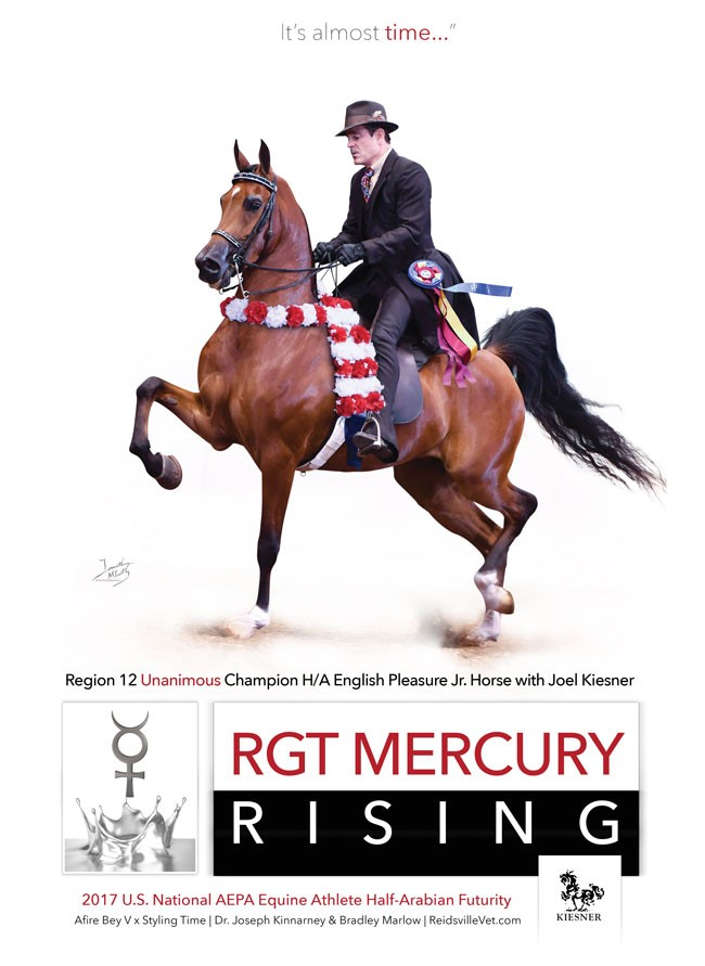 Unanimous Champion RGT Mercury Rising Ready For Tulsa