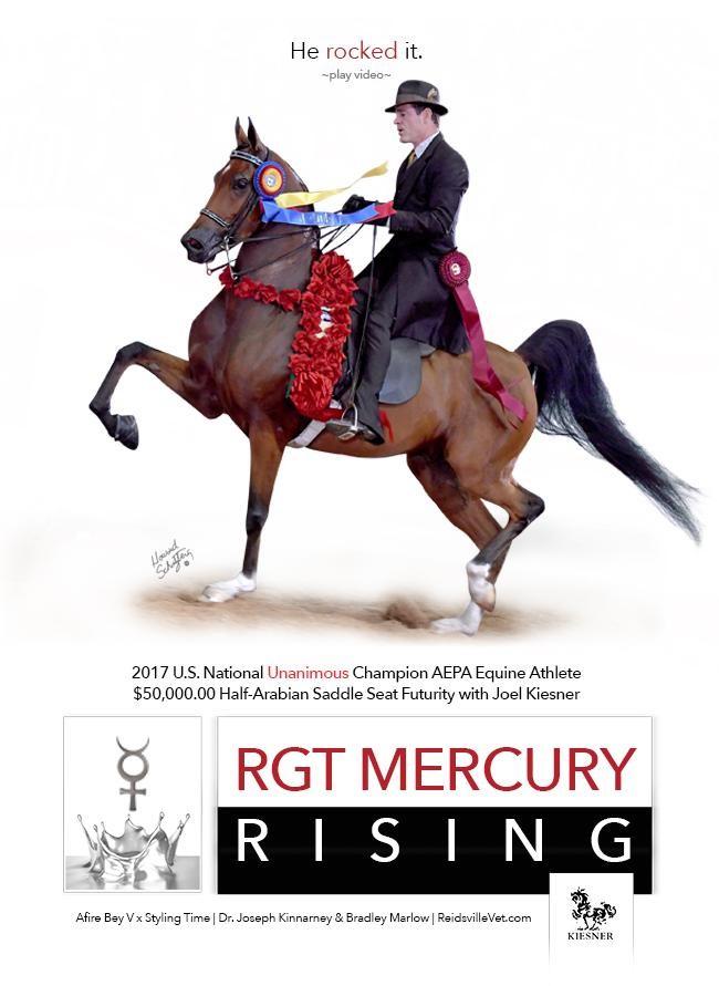 Rockin' Unanimous Champion RGT Mercury Rising