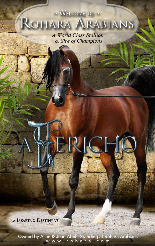 Rohara Welcomes A Jericho - See His Beautiful Foals