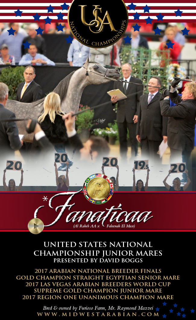 A Bouquet Of 20s Fanaticaa ... Junior Mares ... Presented By David Boggs