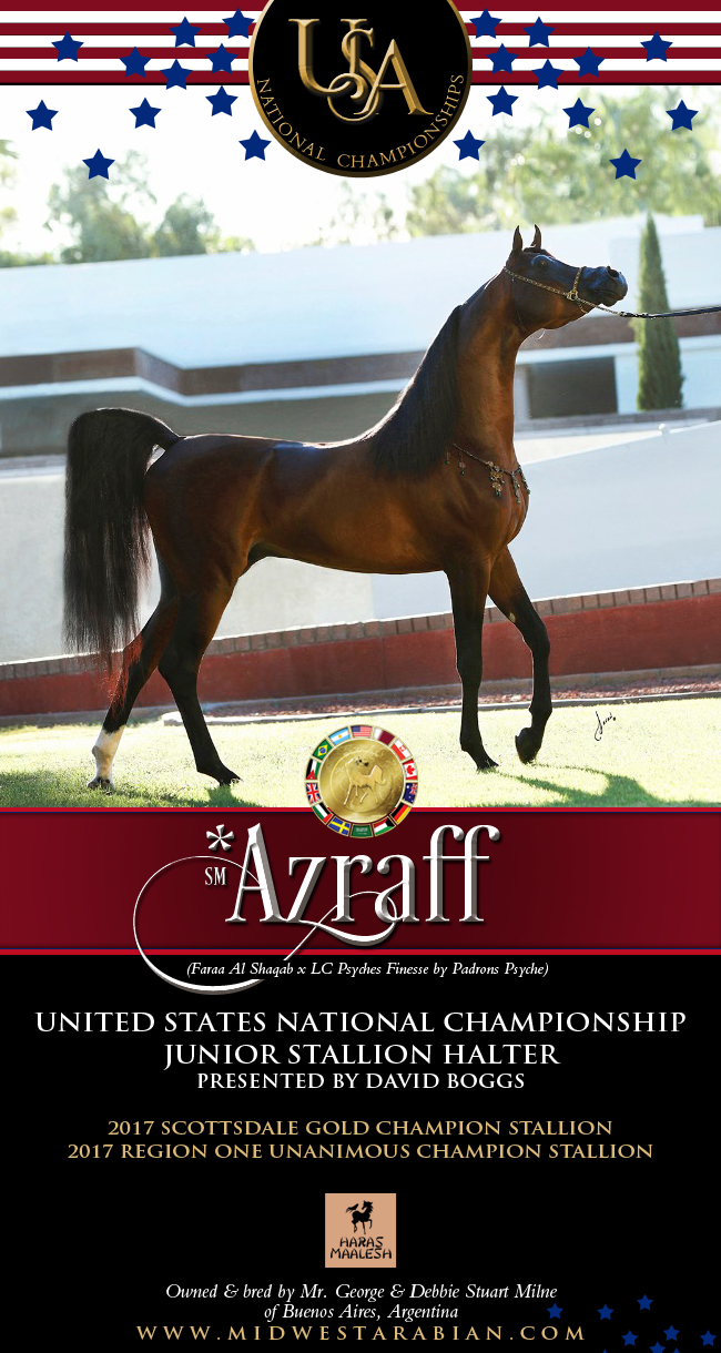 Azraff ... His Heritage Solidifies His Destiny