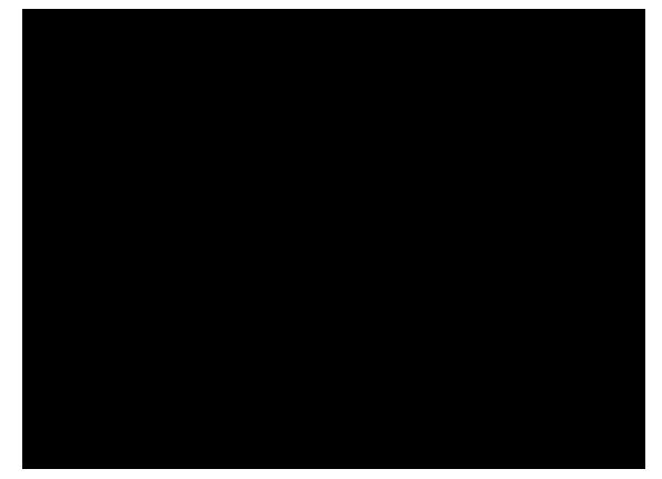 Hfp Logo2012 Sort Bghweb