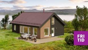 Birkenhytta Storåsen - familiehytte med 4 sov, romslig hems på 43m2. Nøkkelferdig på solrik tomt på Skei, ski in/out langrenn.