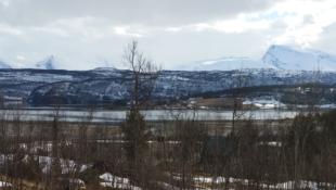 Tre store byggeklare tomter i vakre Mestervik.