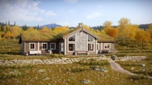 LEVELDÅSEN/ÅL - Storslagen hytte med 5 soverom (10 sengepl.), storstue på 61 m2 og egen TV-stue. Flott tomt (nr 119) m/gode solforhold og utsikt til Hallingskarvet og Reineskarvet