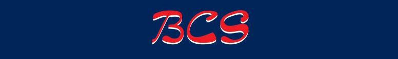 B C S Vehicle Solutions