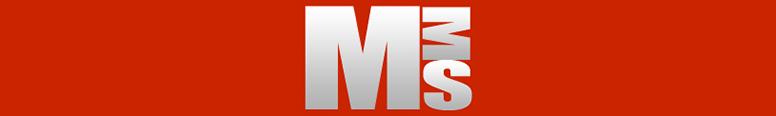 Maine Motor Solutions