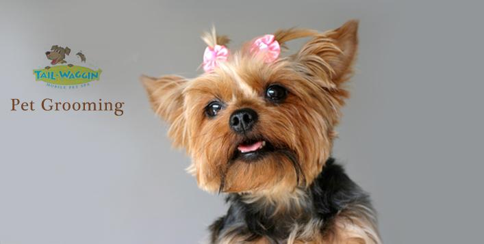 Dog Grooming Mobile Al