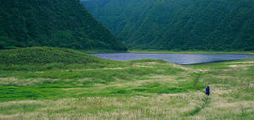 Field With Lake