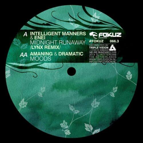 FOKUZ 066-3 Vinyl B